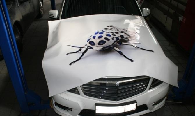 Фото нанесения новой виниловой наклейки на капот авто